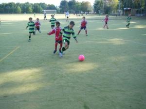 School Sports Partnership (1)